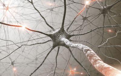 Les risques des biais cognitifs et comment y faire face